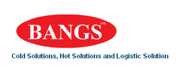 bangs|website development|web design and web hosting and website designing company