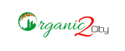 Organic2City | ecommerce website development|web design and web hosting and website designing company